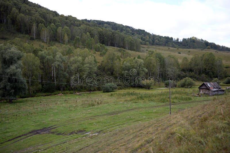 Território de Generalka Altai da aldeia da montanha em Sibéria ocidental R?ssia imagem de stock royalty free