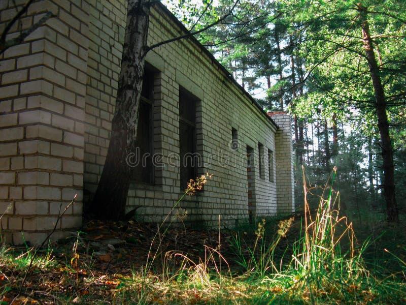 Territorio abbandonato con case dilapidate nel mezzo della foresta immagini stock libere da diritti
