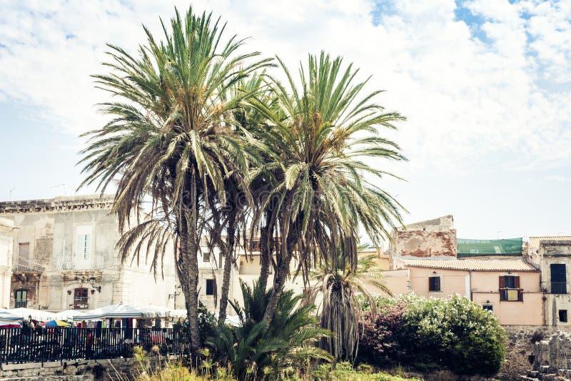 Territorio cerca de ruinas del templo de Apolo en la isla de Ortygia Ortigia, Syracuse, Sicilia, Italia - cuadrado antiguo imagen de archivo libre de regalías