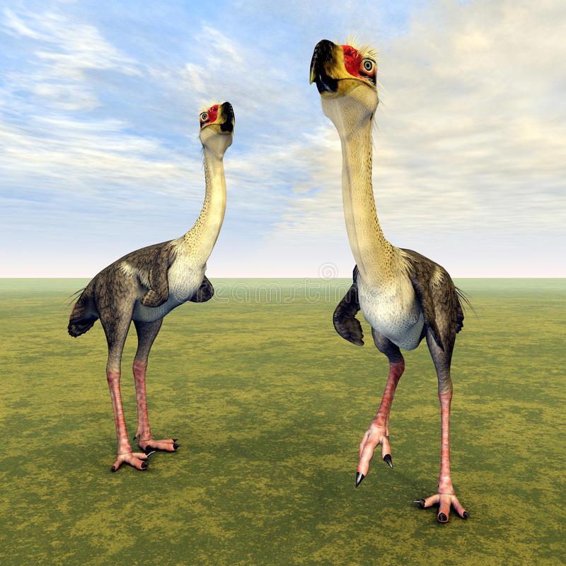 Terror Bird Phorusrhacos. Computer generated 3D illustration with the Terror Bird Phorusrhacos royalty free illustration