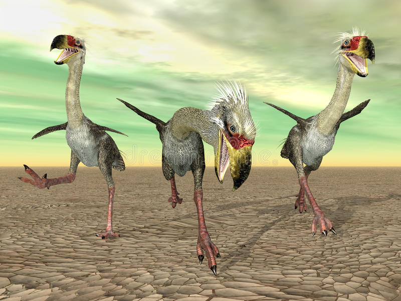 Terror Bird Phorusrhacos. Computer generated 3D illustration with the Terror Bird Phorusrhacos stock illustration