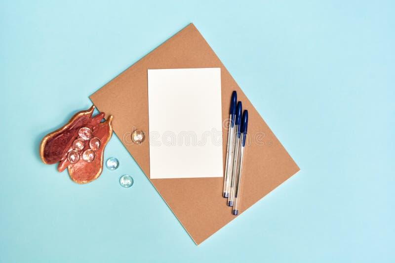Terug naar school, schoollevering, blauw en roze stock foto's