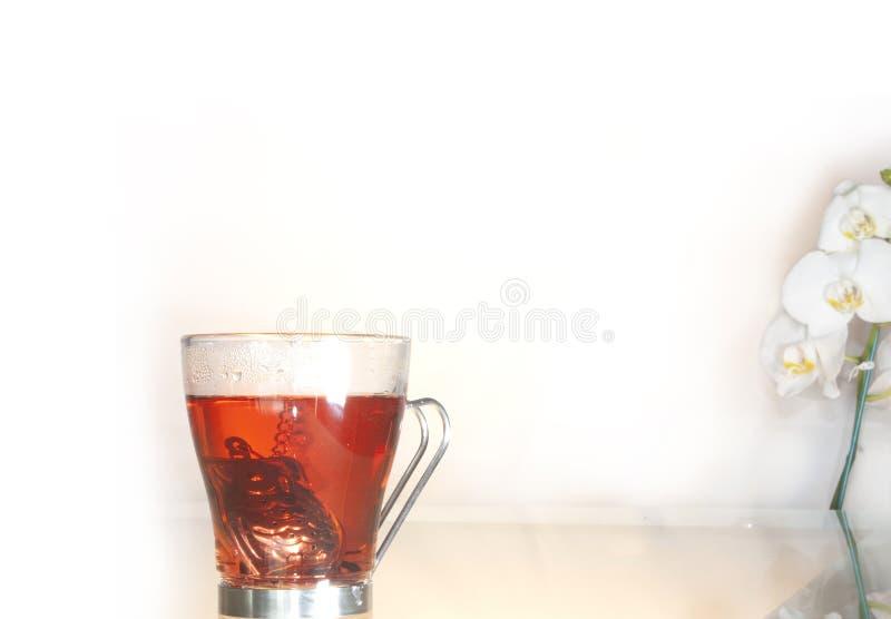 Tescupen som innehåller den enskilda teapoten i sitt inre royaltyfri bild