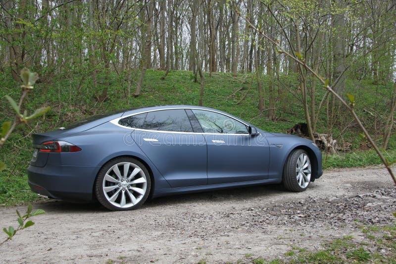 Tesla im Wald lizenzfreie stockfotos