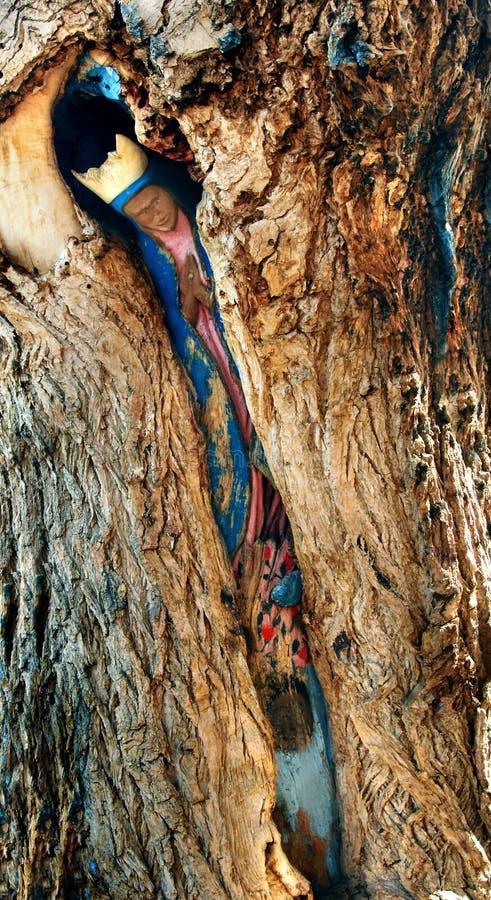 Tesoro nascosto di Albuquerque fotografia stock libera da diritti