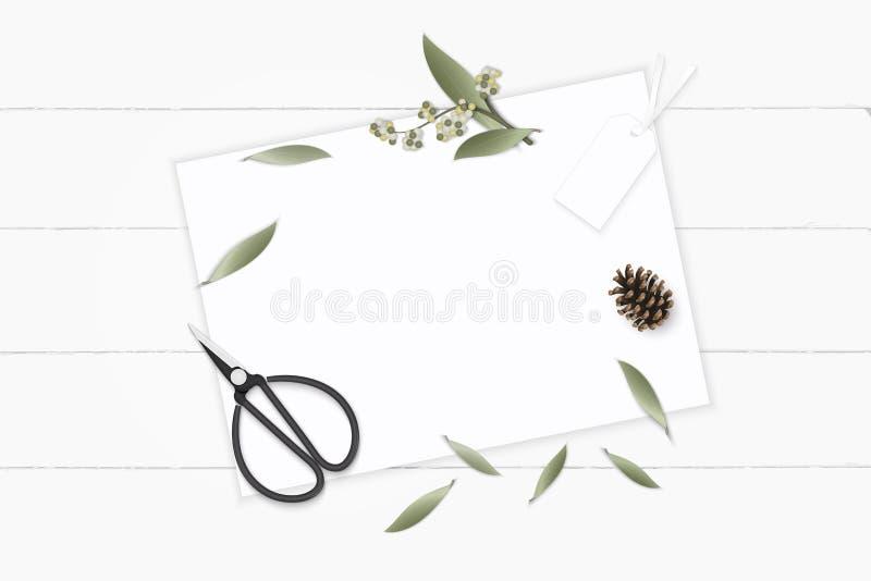 Tesouras de papel colocadas plano do metal da etiqueta e do vintage do cone do pinho da flor da folha da planta de jardim botânic ilustração stock