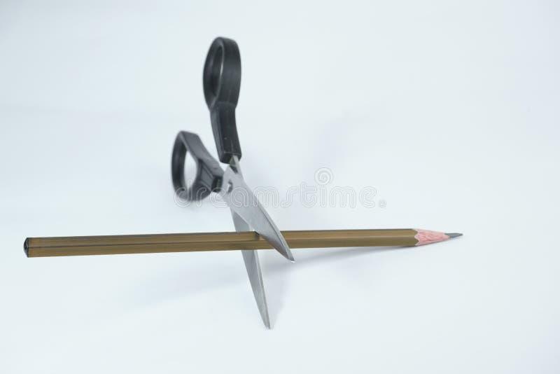 Tesouras que cortam um lápis de madeira marrom no fundo branco foto de stock