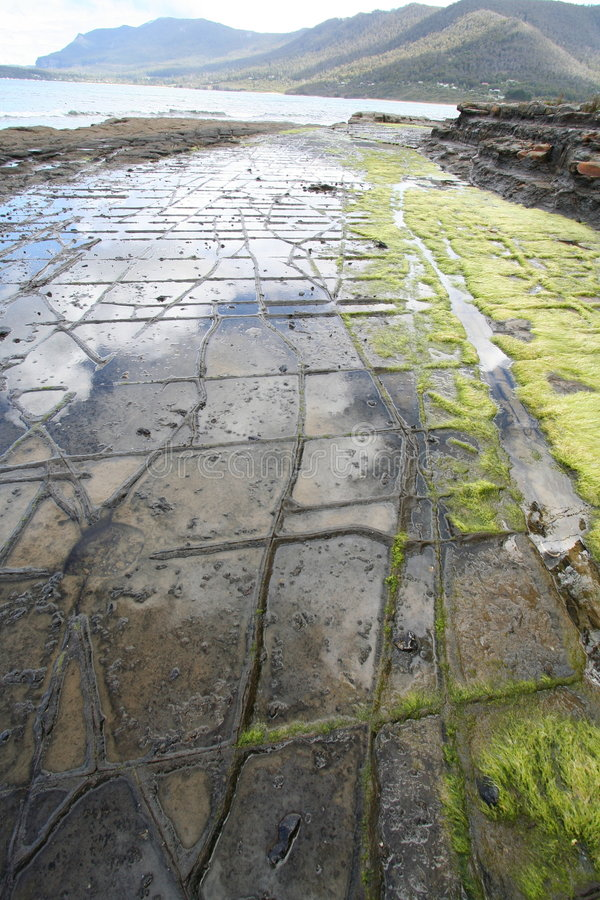 Tessellated pavement royalty free stock image
