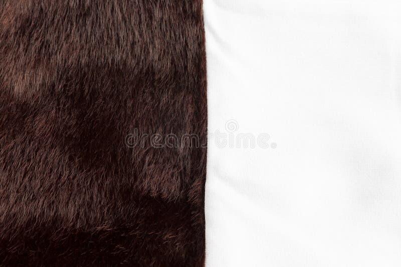 Tessuto marrone scuro di strutture della pelliccia del faux Chiuda sulla pagina completa fotografie stock