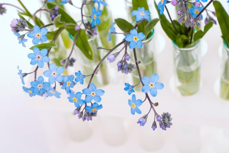 Test-buizen met bloemen royalty-vrije stock afbeelding