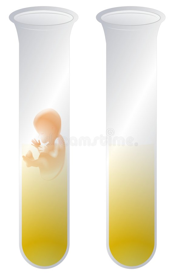 Test Tube Baby. An illustration featuring a tiny fetus within a yellow liquid inside a test-tube. A blank test tube is to the right for other purposes vector illustration