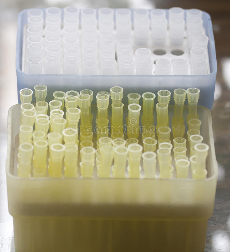 Download Test tubes stock photo. Image of tray, haemal, line, label - 21592862