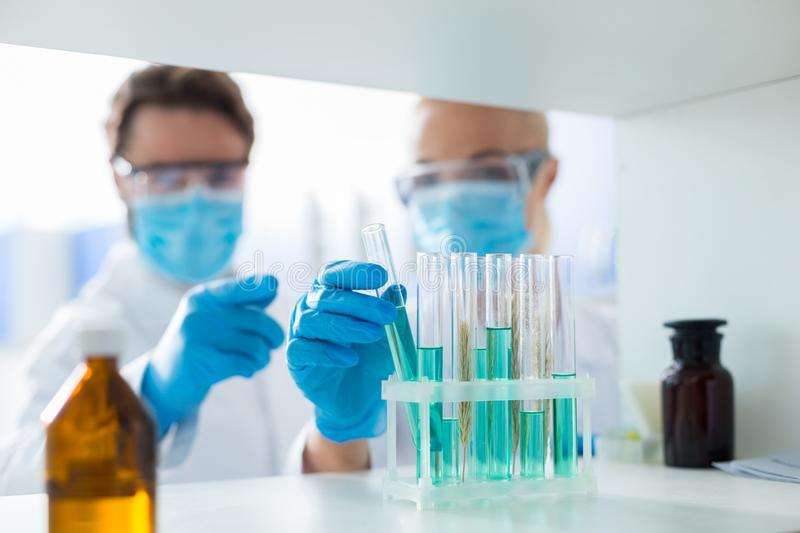 Test tubes being taken for the lab analysis stock photo