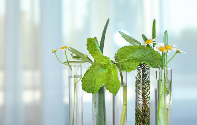 Test tubes of different essential oils with plants against light background stock photos