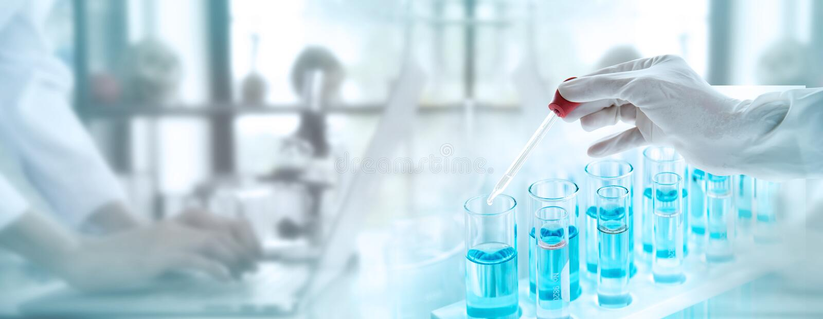 Test tubes with liquid in laboratory, Doctor hand holding dropper with dripping transparent glass pipette. scientist working with royalty free stock photo