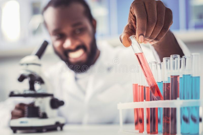 Skillful chemist placing test tubes in order. Test tubes. Skillful responsible chemist placing test tubes in order royalty free stock images