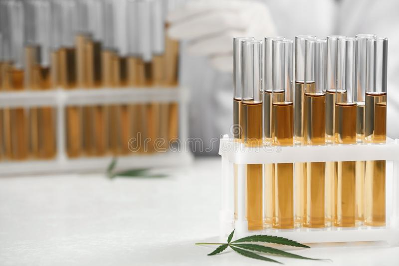 Test tubes with urine samples, hemp leaf and doctor on background royalty free stock photos