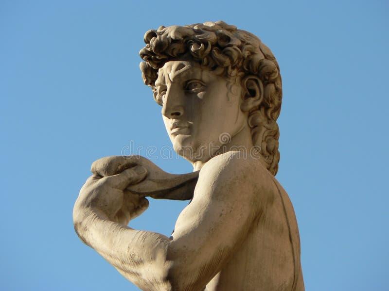 Testa & spalle di David immagine stock libera da diritti