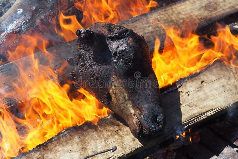 """Testa cucinata tradizionale delle pecore, o """"smiley """"in un distretto sudafricano fotografie stock libere da diritti"""