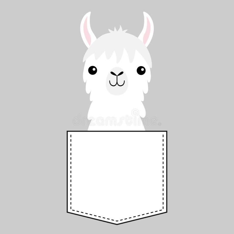 Testa del fronte dell'alpaga del lama nella tasca Animali svegli del fumetto Linea del un poco Carattere di Kawaii Colore bianco  royalty illustrazione gratis
