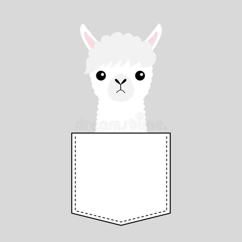Testa del fronte del lama dell'alpaga nella tasca Animali svegli del fumetto Carattere di Kawaii Linea del un poco Colore bianco  illustrazione vettoriale