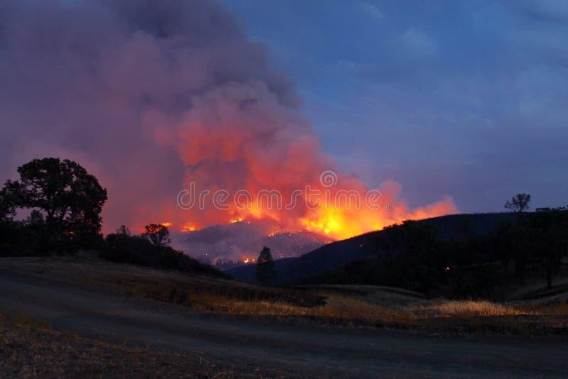 Testa del fuoco immagini stock libere da diritti