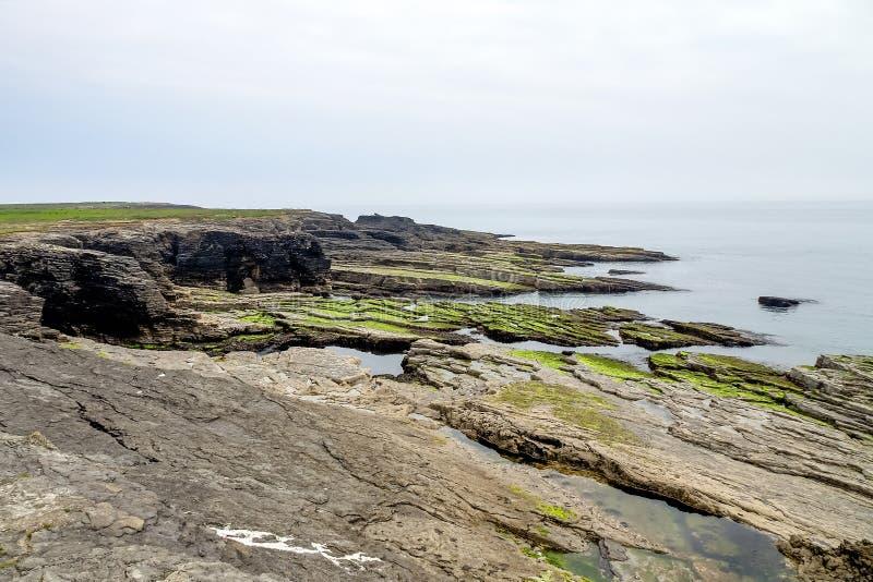 Testa del gancio alla punta della penisola del gancio in contea Wexford, Irlanda fotografie stock