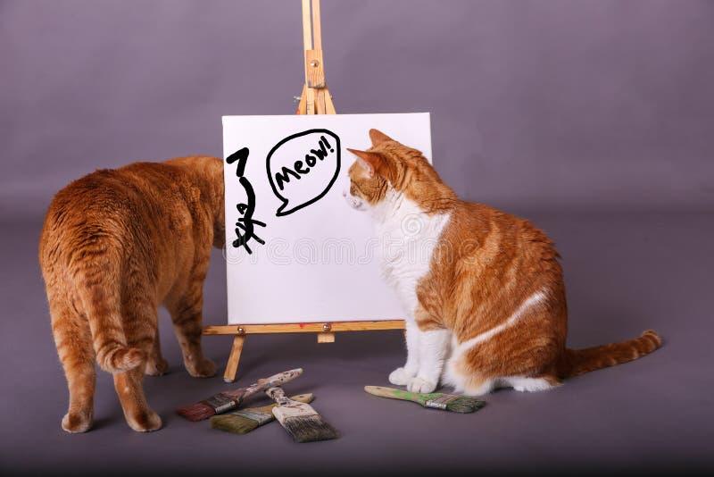Testa del gatto illustrata con il miagolio di parola dipinto in due gatti reali neri dal disegno del gatto fotografia stock libera da diritti