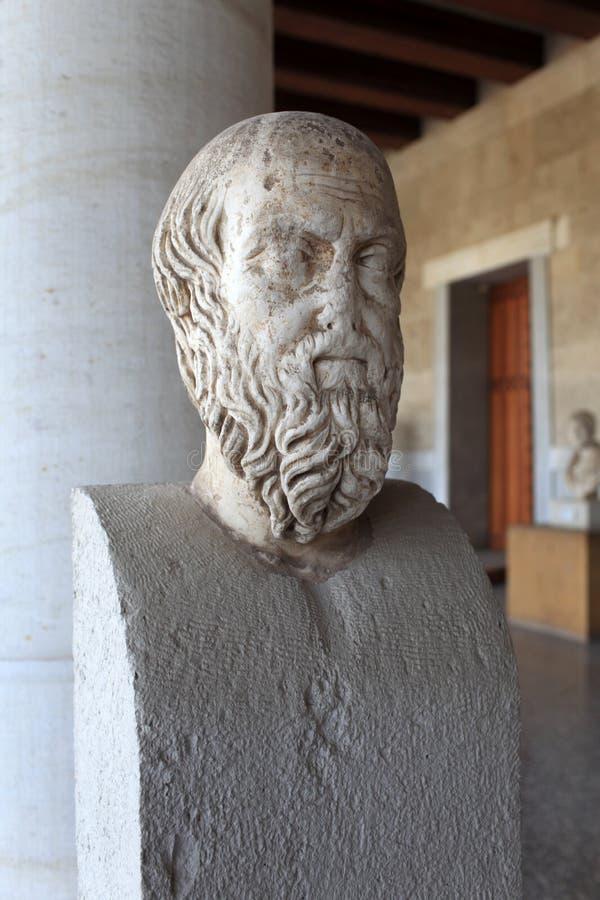 Testa del herodotus in museo fotografie stock libere da diritti
