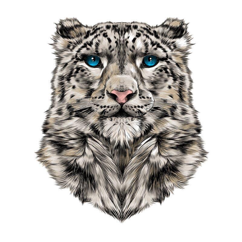 Testa del leopardo delle nevi illustrazione di stock