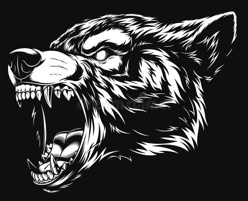 Testa del lupo feroce illustrazione di stock