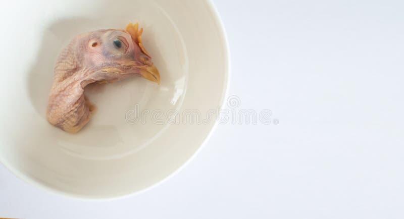 Testa del pollo fotografia stock libera da diritti
