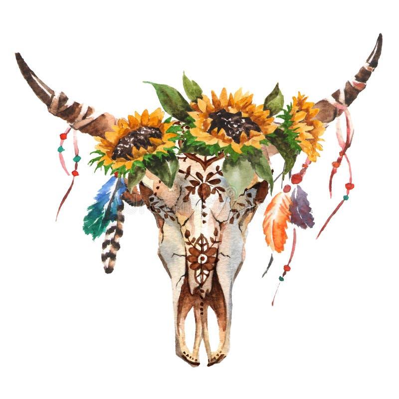 Testa del ` s del toro isolata acquerello con i fiori e le piume su fondo bianco Stile di Boho Cranio per lo spostamento, carta d illustrazione di stock