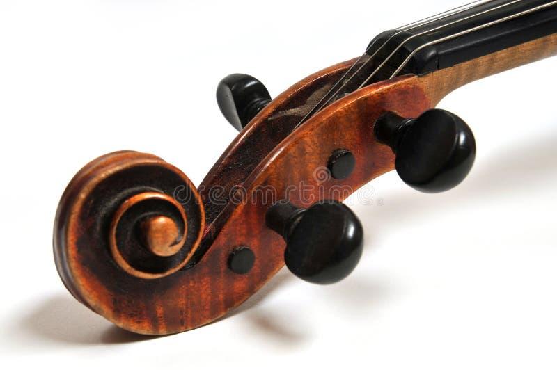 Testa del violino fotografie stock