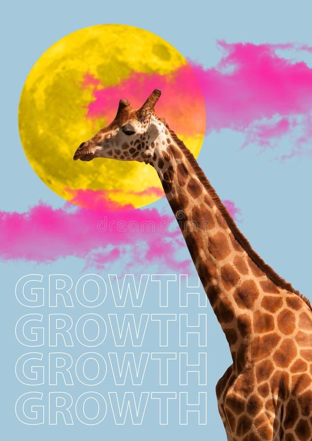 Testa della giraffa Il concetto della crescita, comincia su, concetti di affari fotografia stock