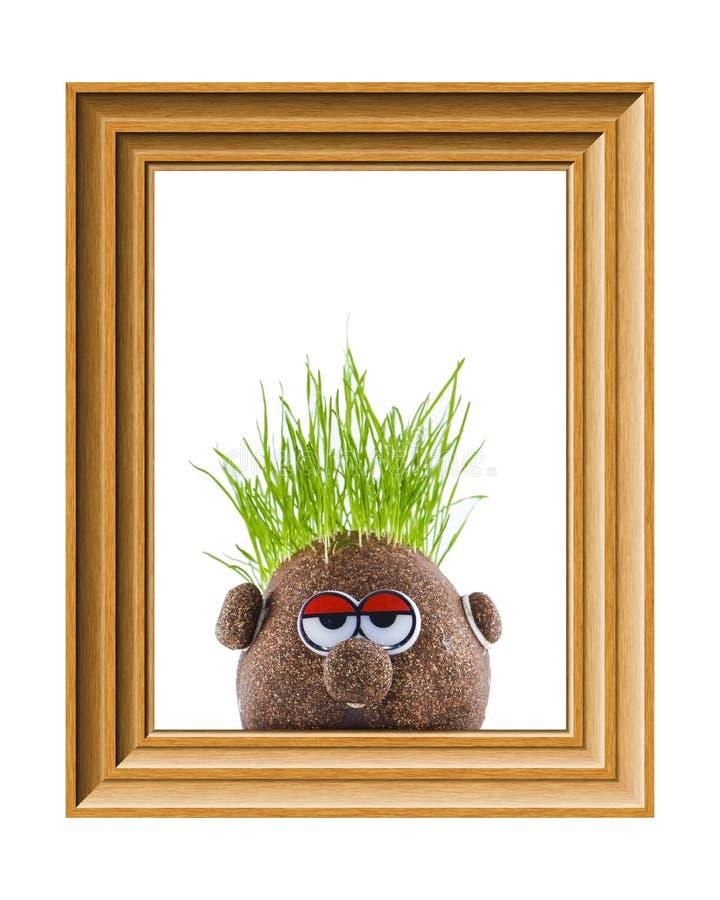 Testa della patata con erba immagini stock libere da diritti