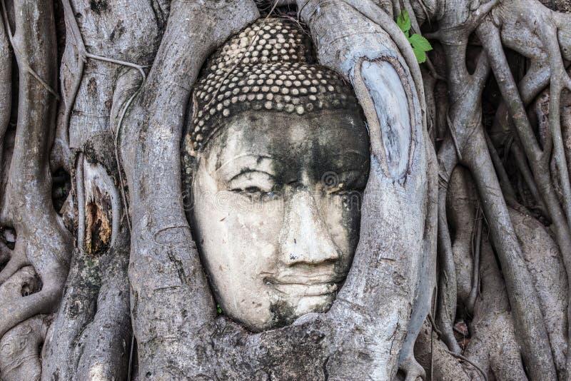 Testa di Buddha a Wat Mahathat fotografia stock libera da diritti