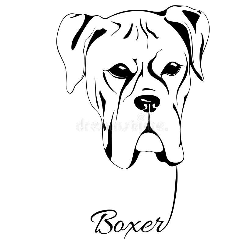 Testa di cane del pugile illustrazione vettoriale illustrazione di marchio 79306637 - Dessin chien boxer ...