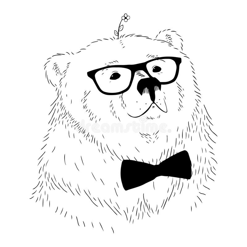 Testa disegnata a mano dell'orso dell'illustrazione di vettore immagini stock libere da diritti