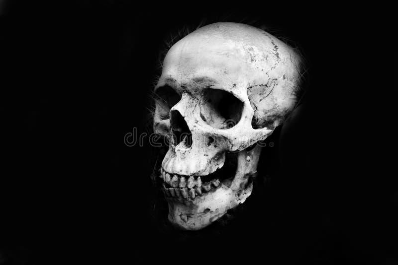 Testa umana del cranio su fondo nero scuro - monocromio fotografia stock