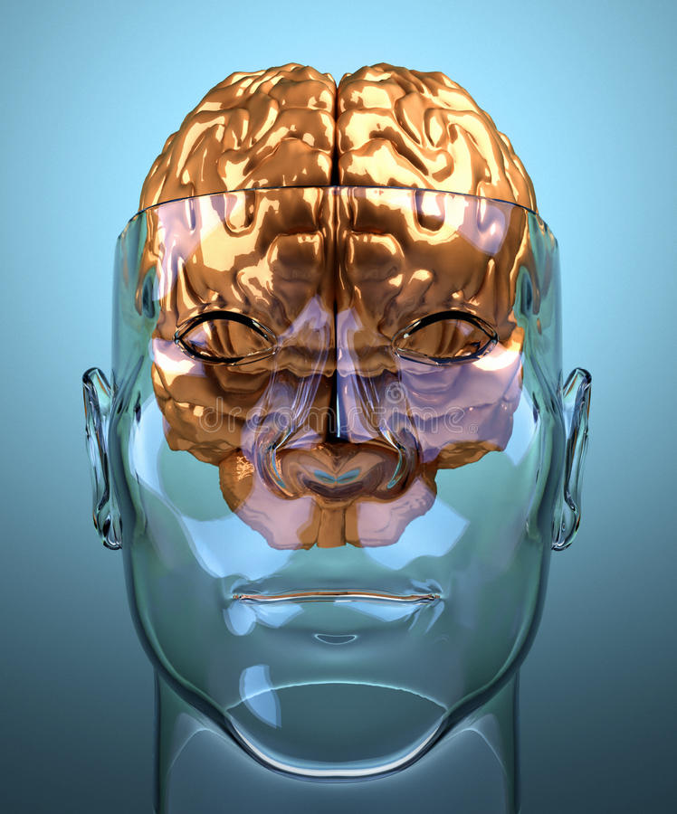 Testa umana divisa vetro con il cervello illustrazione di stock