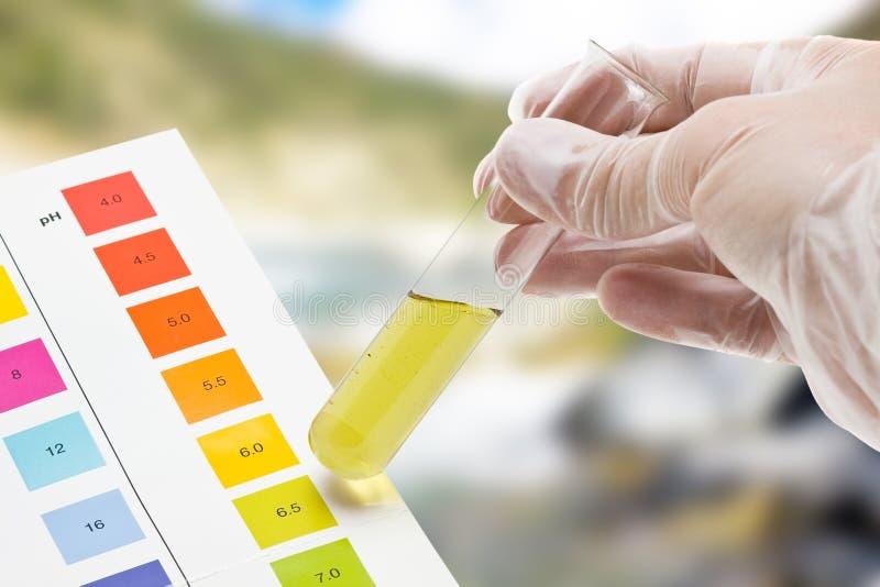 Teste ao ar livre do pH imagem de stock