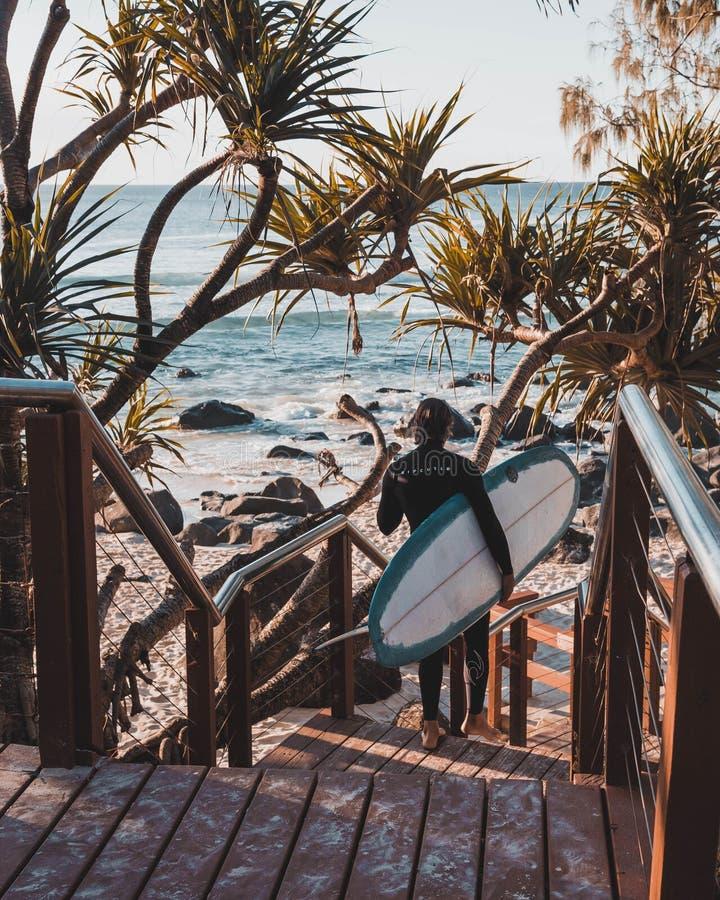 Teste di Burleigh che praticano il surfing fotografie stock