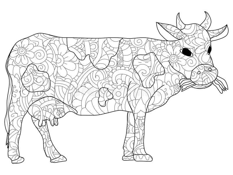 Teste padrão animal da vaca da coloração antistress adulta, Astracã A ilustração de linhas pretas rabisca, o fundo branco ilustração do vetor
