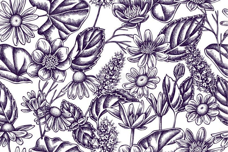Teste padrão artístico com celandine, camomila, pastilha de hortelã ilustração royalty free