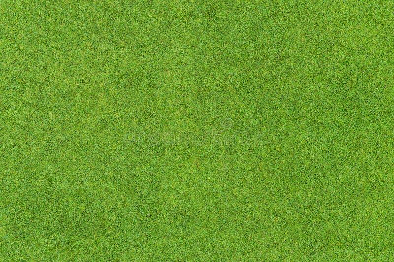 Teste padrão bonito da grama verde do campo de golfe imagem de stock royalty free