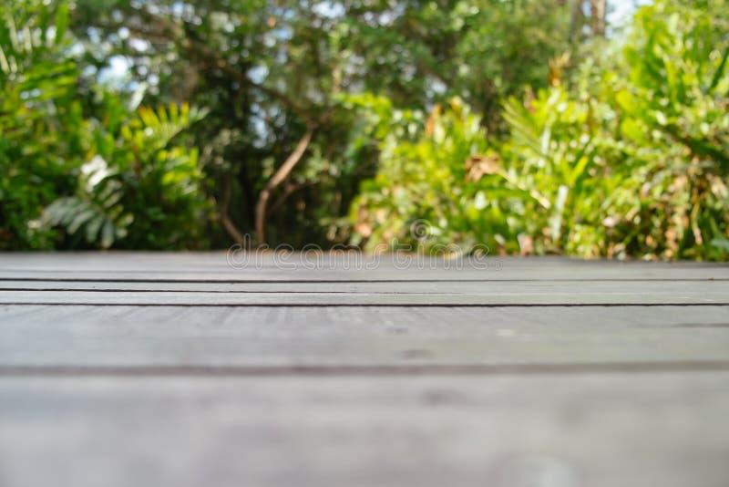Teste padrão borrado do fundo da natureza do assoalho de madeira escuro com a floresta verde luxúria foto de stock royalty free