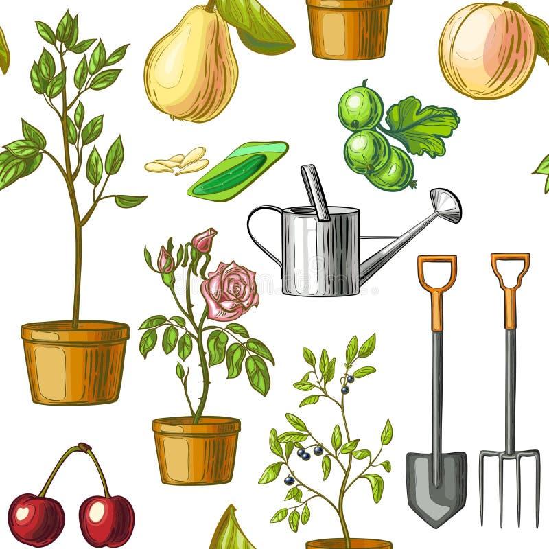 Teste padrão colorido de ferramentas de jardinagem, lata molhando, sementes, plantas, frutos isolados no fundo branco ilustração do vetor