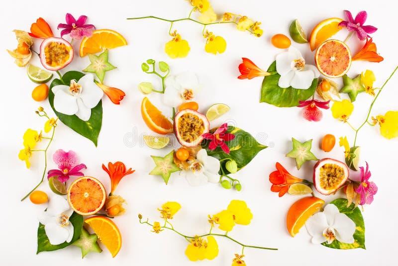 Teste padrão colorido de frutos exóticos inteiros e cortados com folhas e as flores tropicais imagem de stock
