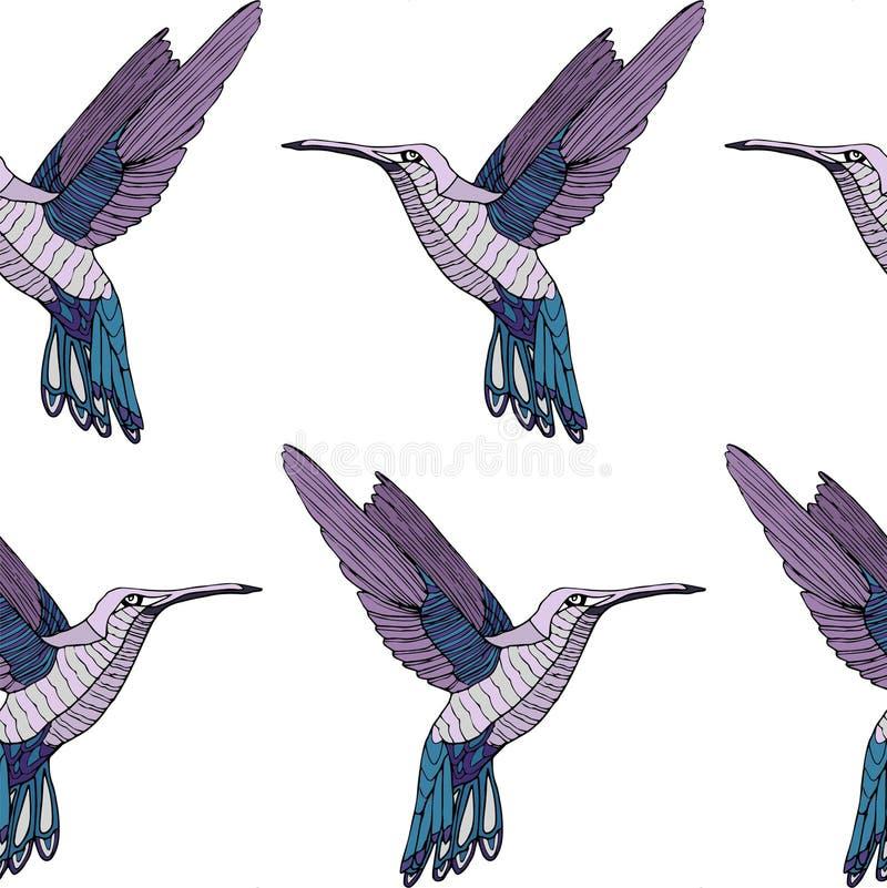 Teste padrão colorido do pássaro do colibri ilustração do vetor